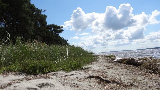 Ostsee Wanderweg auf Rügen
