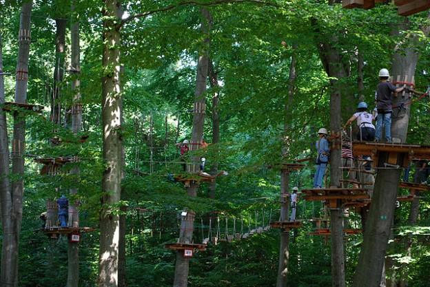 Urlauber klettern im Waldseilpark